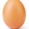 """La photo d'un œuf devient la plus """"likée"""" de l'histoire d'Instagram"""