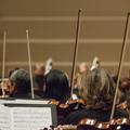 """""""Paye ta note"""" : le site qui s'attaque au harcèlement sexuel dans le milieu de la musique classique"""