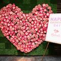 """Le """"Galentine's Day"""", l'alternative à la Saint-Valentin qui célèbre la solidarité féminine"""