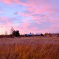 Au-delà du cercle polaire, les autres couleurs de la Laponie