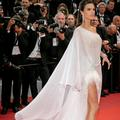 Alessandra Ambrosio, Rita Ora, Aya Nakamura... De drôles d'oiseaux s'envolent à Cannes