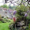 """Fantômes, palmiers et """"afternoon tea"""": dans les pas de la reine Victoria sur l'île de Wight"""