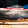 Peut-on acheter du thon rouge sans participer à l'extinction de l'espèce ?