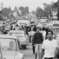 Cinquantième anniversaire de Woodstock : «Sans la contre-culture américaine, l'iPhone n'aurait pas existé !»