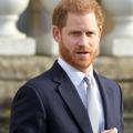 """Le prince Harry refuse que sa vie soit évoquée dans """"The Crown"""""""