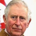 Le prince Charles a-t-il esquivé une poignée de main du vice-président américain ?