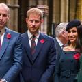 Meghan Markle et le prince Harry, obligés de retourner au Royaume-Uni pour leurs engagements royaux