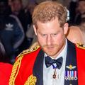 Le prince Harry a-t-il fait des implants capillaires ?