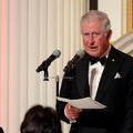 Le prince Charles s'exprime pour la première fois depuis l'annonce de sa guérison