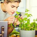 Les astuces de pro pour cultiver son mini-potager