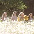 Sans Festival de Cannes, Chopard dévoilera ses parures à l'automne lors d'un gala de charité