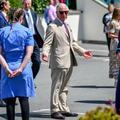 Le prince Charles, Céline Dion, Johnny Depp : les photos qui vont égayer votre week-end (ou du moins essayer)