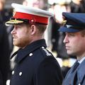 """""""Ils se parlent à peine"""" : les raisons de la brouille entre les princes Harry et William révélées"""