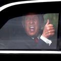 Arielle Dombasle, Donald Trump, Suri Cruise : les photos qui vont égayer votre week-end (ou du moins essayer)