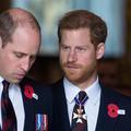 """La réconciliation entre les princes Harry et William : """"Cela prendra du temps"""""""