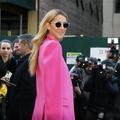 Céline Dion décroche son premier rôle au cinéma
