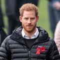 """Le prince Harry fait une apparition surprise dans le """"Danse avec les stars"""" britannique"""