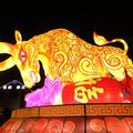 Année du Buffle : son influence sur les signes du zodiaque
