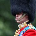 Prince William, le charme discret du futur roi