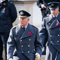 """Les princes Charles et William se réuniront bientôt pour décider de """"l'avenir de la famille royale"""""""