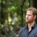 """""""Les hauts et les bas, les erreurs, les leçons apprises"""" : le prince Harry va publier ses mémoires"""