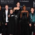D'après Angelina Jolie, les enfants de Brad Pitt étaient prêts à témoigner contre lui