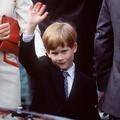 """""""The Crown"""" peine à trouver son jeune prince Harry"""