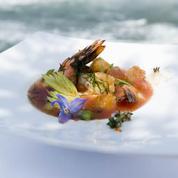 Gaspacho de crevettes au piment d'Espelette