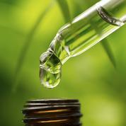 Astuces beauté : zoom sur l'huile essentielle de tea tree