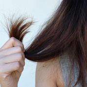 Cheveux fourchus : halte aux idées reçues