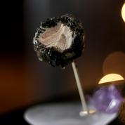 Sucette de foie gras et truffe noire
