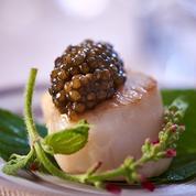 Saint-Jacques au caviar