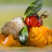 Lotte et purée carotte-abricot