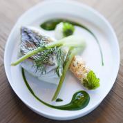 Sandre à la vapeur d'algues et sauce verte