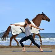 À Deauville, les hôtels Barrière lâchent les chevaux