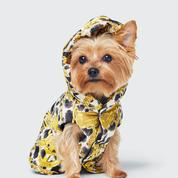 Moschino x H&M : Jeremy Scott imagine une collection ultra bling pour