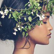 Phytothérapie et beauté : ces plantes qui nous rendent plus belles
