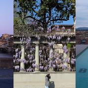 Des palais Renaissance aux officines branchées, le nouvel âge d'or de Florence