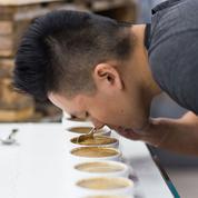 Le cupping pour les débutants, ou l'art de déguster son café comme un professionnel