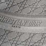 Le sac Lady Dior se transforme pour le printemps