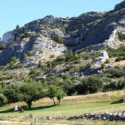 Servanes, en Provence : le golf au chant des cigales