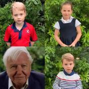 Dans une vidéo inédite, George, Charlotte et Louis questionnent le scientifique David Attenborough