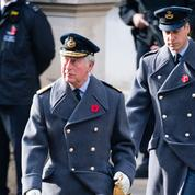Les princes Charles et William se réuniront bientôt pour décider de