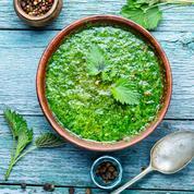 Récolte, recette, bienfaits… Tout savoir sur la soupe d'orties