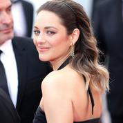 Marion Cotillard, Sean Penn, Catherine Deneuve... Quelles stars seront présentes au Festival de Cannes?