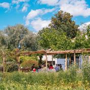 Maison d'hôte, oasis rétro, villa d'architecte... Nos meilleures adresses pour un week-end à Arles