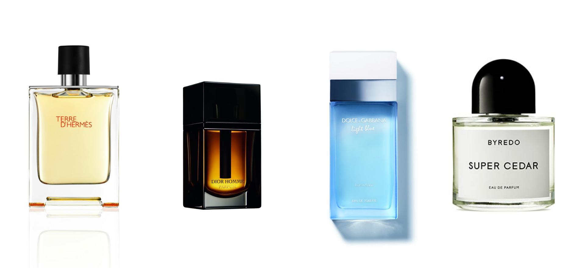 CèdreArbre Le De La Parfumerie Figaro Madame Caché IbHYW29EeD