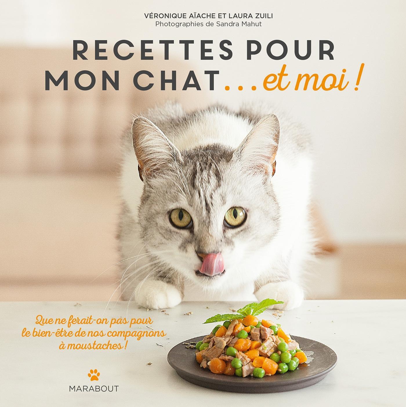 Est Il Bien Raisonnable De Cuisiner Pour Son Chat Cuisine