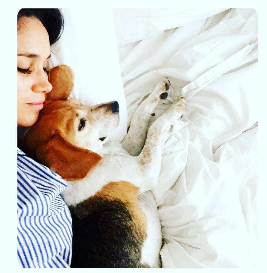Appartement, vacances, soirées... Quand Meghan Markle partageait tout sur Instagram - La vie de célibataire