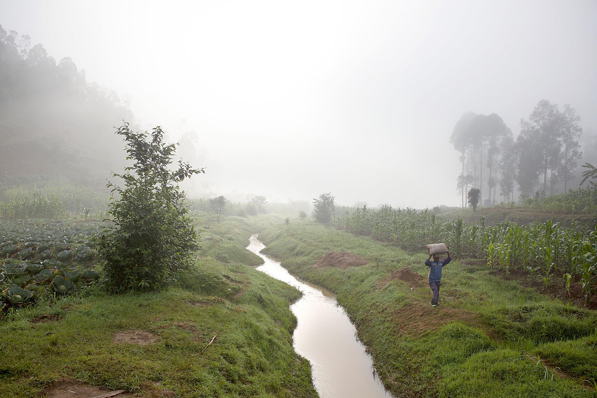 Au Rwanda, le tournage de l'espoir pour panser les plaies du génocide - photo 1